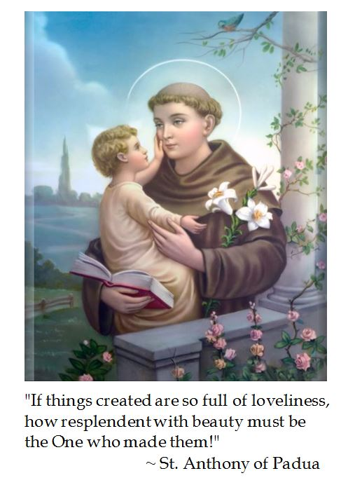 St. Anthony of Padua on Beauty