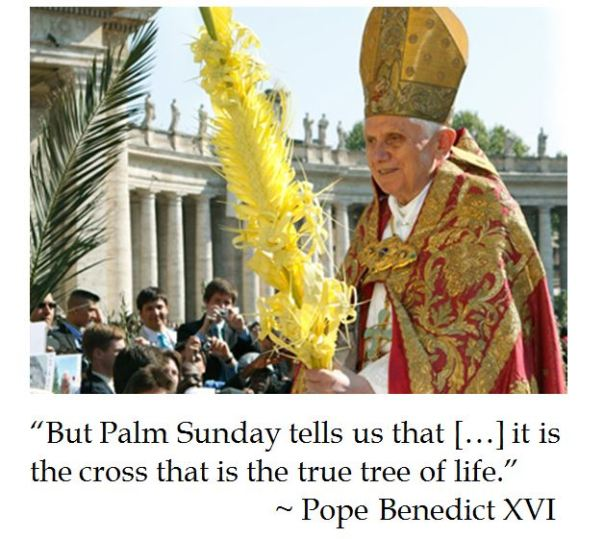 Pope Benedict XVI on Palm Sunday